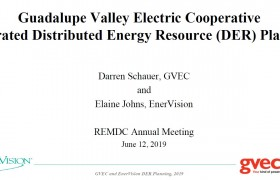 Guadalupe Valley Electric Cooperative Integrated Distributive Energy Resource (DER) Planning presented at the REMDC Annual Meeting